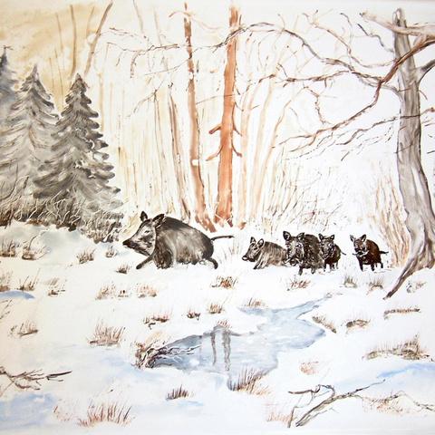 Bild: K 50 · Glasur 1040 Wildschweine bunt bemalt